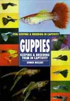 Fancy Live Guppies for sale