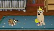 Petz: Dogz 5 and Catz 5, Virtual Pets.